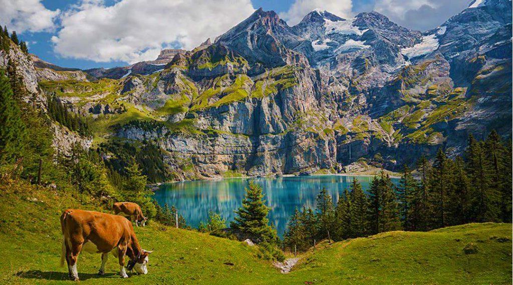 زندگی در سوئیس