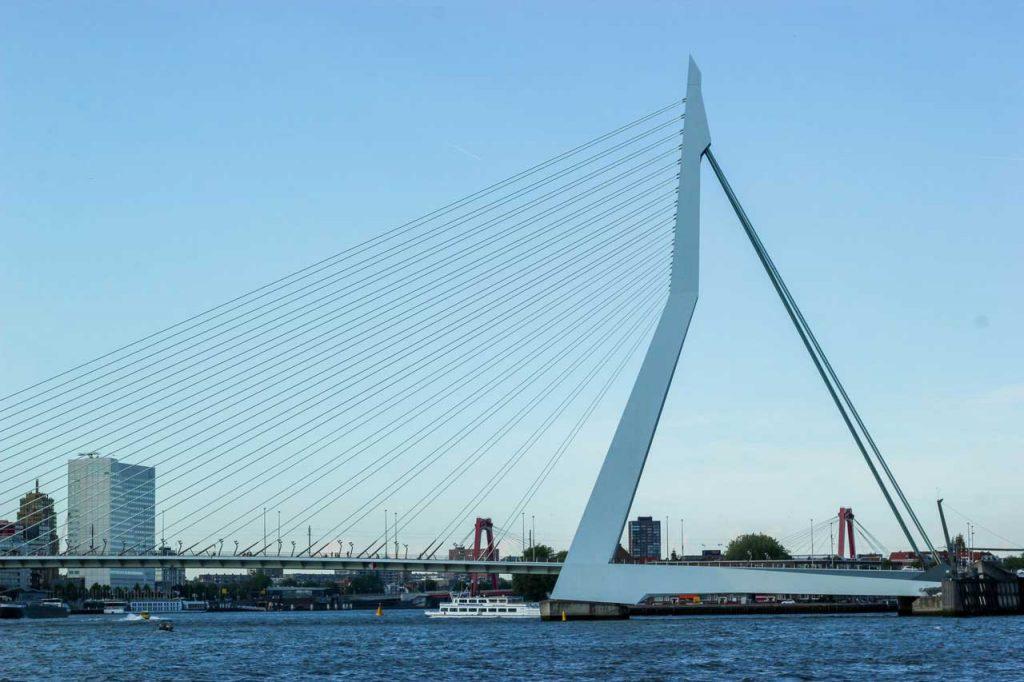 Erasmus-Bridge,-Rotterdam,-The-Netherlands