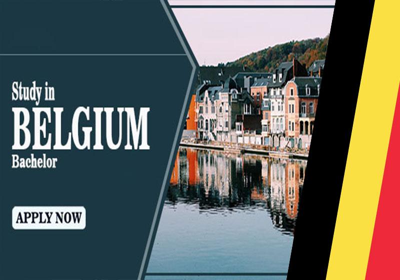 Study-bachelor-in-belgium